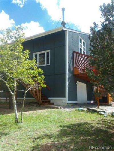 Georgetown Single Family Home Active: 200 Skyline Road