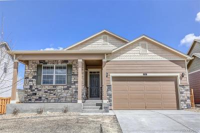 Castle Rock Single Family Home Under Contract: 6074 Sun Mesa Circle