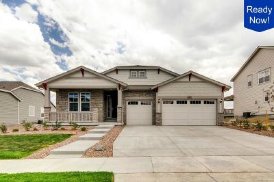 Aurora CO Single Family Home Active: $599,900