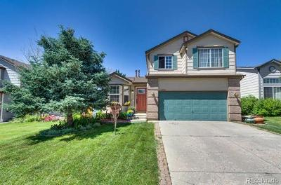 Parker Single Family Home Active: 11096 Rodeo Circle