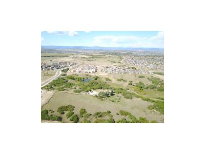 Castle Rock Residential Lots & Land Under Contract: 3943 Augustine Court