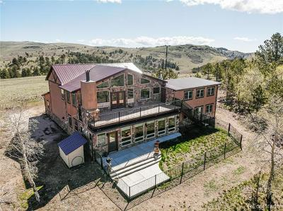 Single Family Home Active: 651 Alpine Ranch Circle