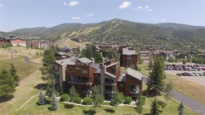 Steamboat Springs Condo/Townhouse Active: 2160 Mount Werner Circle #27E