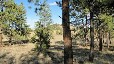 Park County Residential Lots & Land Active: 392 Hay Hook Way