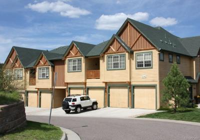 Evergreen Condo/Townhouse Under Contract: 1194 Red Lodge Drive #204