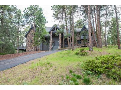 Evergreen Single Family Home Active: 699 Soda Creek Drive