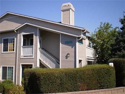 Highlands Ranch Condo/Townhouse Sold: 8365 Pebble Creek Way #203