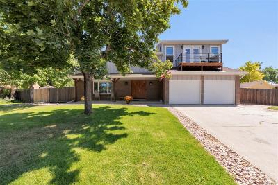 Arvada Single Family Home Active: 7292 Queen Street