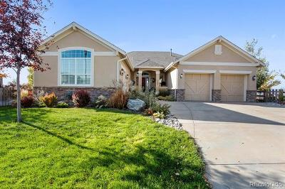Broomfield Single Family Home Active: 5135 Foxglove Trail