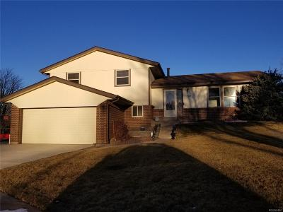 Denver CO Single Family Home Under Contract: $425,000