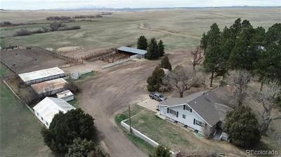 Franktown Single Family Home Active: 6597 South Highway 83 Highway