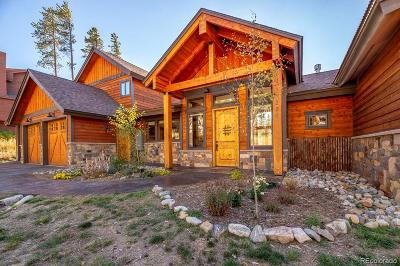 Summit County Single Family Home Active: 226 Moonstone Road