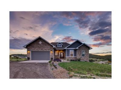 Castle Rock Single Family Home Under Contract: 542 Granger Court