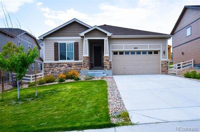 Castle Rock Single Family Home Active: 2935 Echo Park Drive