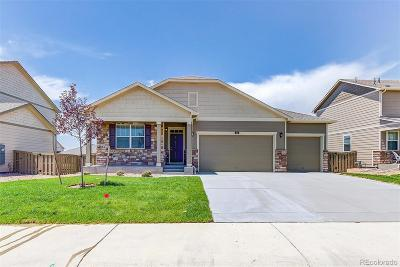 Castle Rock Single Family Home Active: 2265 Shadow Rider Circle