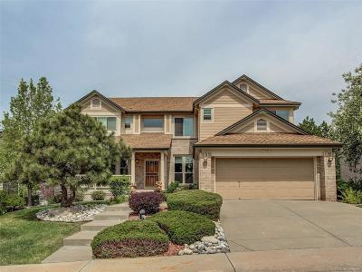 Highlands Ranch Single Family Home Active: 6449 Ashburn Lane
