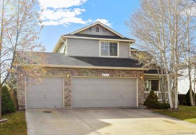 Brighton Single Family Home Active: 643 Rio Rancho Way