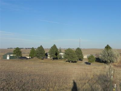Elbert County Single Family Home Active: 9662 Highway 86