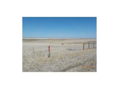 Elbert County Residential Lots & Land Active: 47351 Cr 101