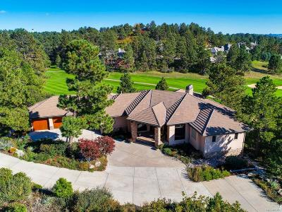 Castle Rock Single Family Home Under Contract: 174 Ramshorn Drive