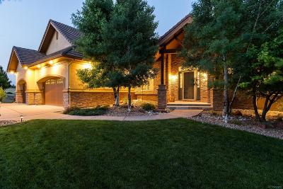 Douglas County Single Family Home Active: 11909 Bell Cross Circle