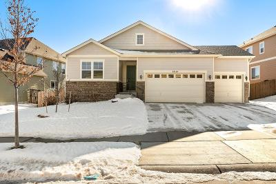 Parker Single Family Home Under Contract: 17114 East Neu Towne Parkway