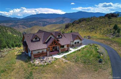 Pine Single Family Home Under Contract: 15065 Wetterhorn Peak Trail