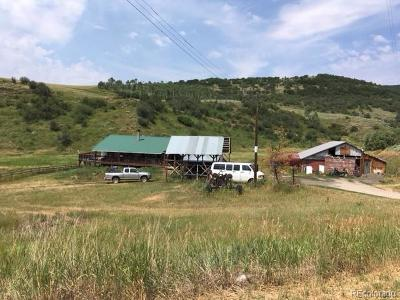 Routt County Single Family Home Active: 39805 County Road 44b