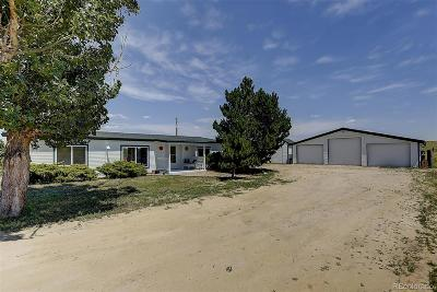 Elbert County Single Family Home Under Contract: 1250 County Road 166