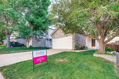 Westminster Single Family Home Active: 8068 Clay Drive
