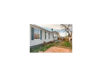Dacono Single Family Home Under Contract: 1017 Glen Creighton Drive