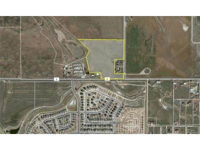 Broomfield Residential Lots & Land Active: Wcr 11 E. 168th Avenue