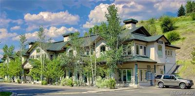 Steamboat Springs Commercial Active: 1120 South Lincoln Avenue