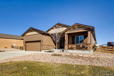 Peyton Single Family Home Active: 10823 Klondike Drive