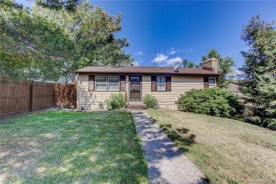 Denver Single Family Home Active: 255 South Stuart Street