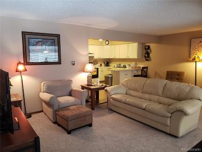 Clear Creek County Condo/Townhouse Sold: 9366 Fall River Road #302