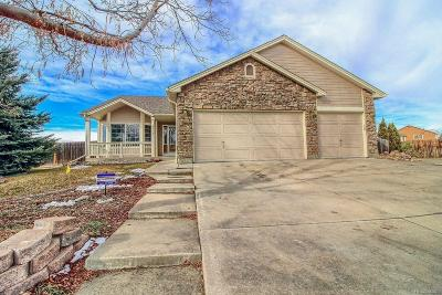 Longmont Single Family Home Active: 504 Minot Place
