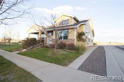 Greeley Single Family Home Active: 1810 65th Avenue Court