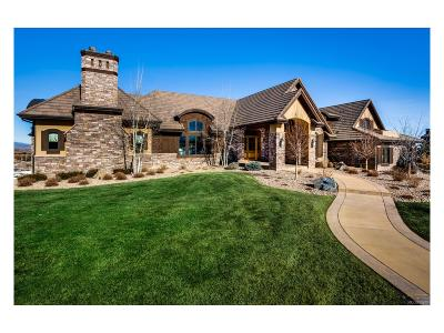 Niwot Single Family Home Active: 9253 Blue Spruce Lane