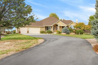 Severance Single Family Home Under Contract: 39658 Ridge Park Drive