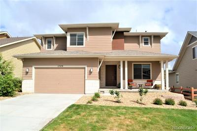 Candelas Single Family Home Active: 17379 West 94th Drive