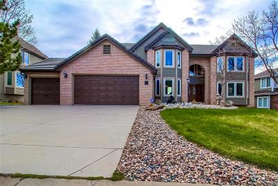 Littleton Single Family Home Active: 10 Twin Flower