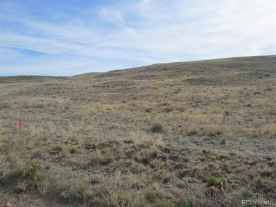 Hartsel CO Residential Lots & Land Active: $16,000