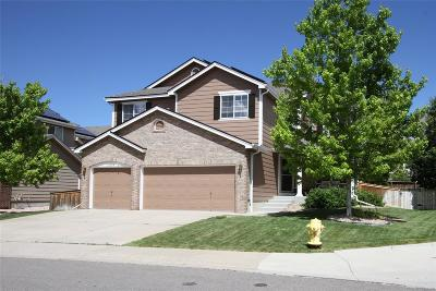 Single Family Home Active: 10094 Eagle Valley Way