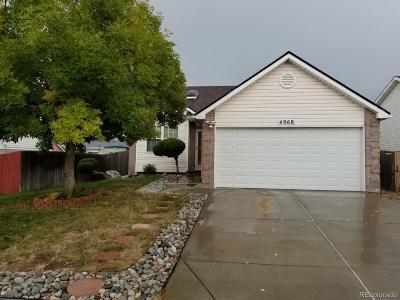 Denver Single Family Home Active: 4968 Eagle Street