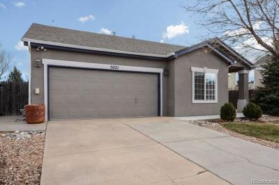 Castle Rock Single Family Home Under Contract: 5021 Thorndike Avenue