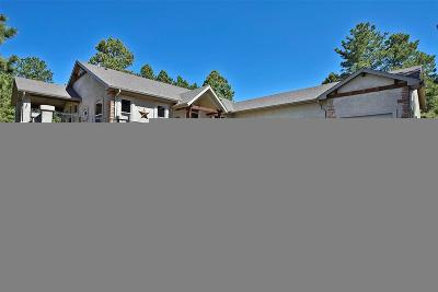 Monument Single Family Home Under Contract: 669 Winding Hills Road