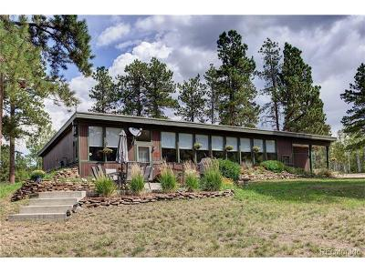 Morrison Single Family Home Under Contract: 9741 Hilldale Drive