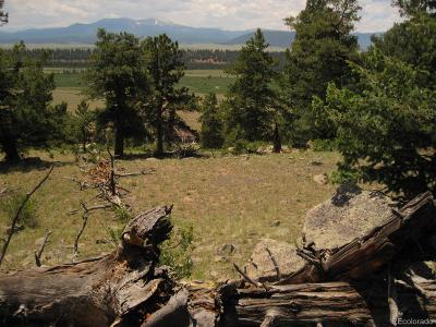 Fairplay CO Residential Lots & Land Active: $24,900