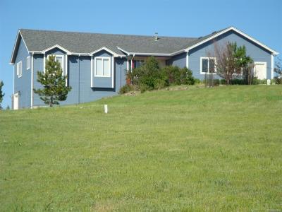 Elizabeth, Parker Single Family Home Under Contract: 7173 South Shenandoah Drive